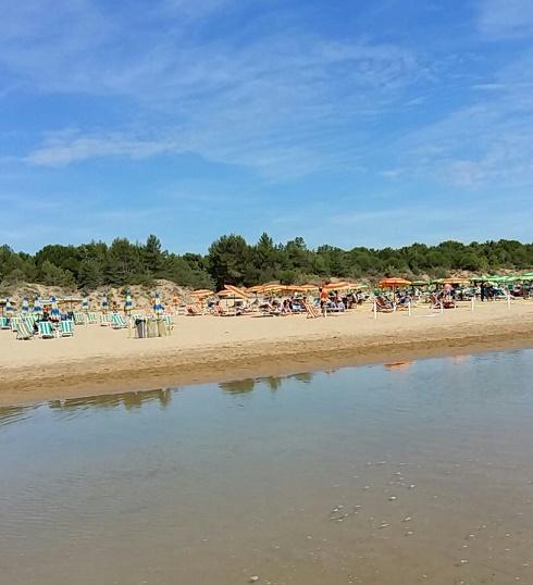 La spiaggia del Villaggio Getur, con la pineta a ridosso